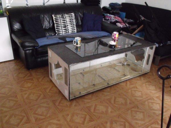 Table basse terrarium pas cher