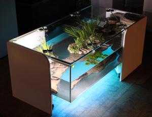 Aquarium table basse traviata