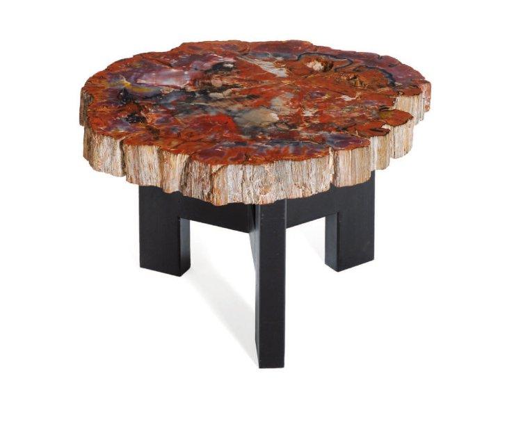 Table basse bois silicifié